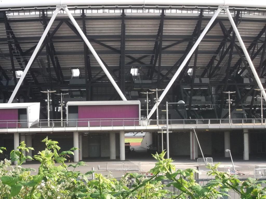 stadium-bones.jpg